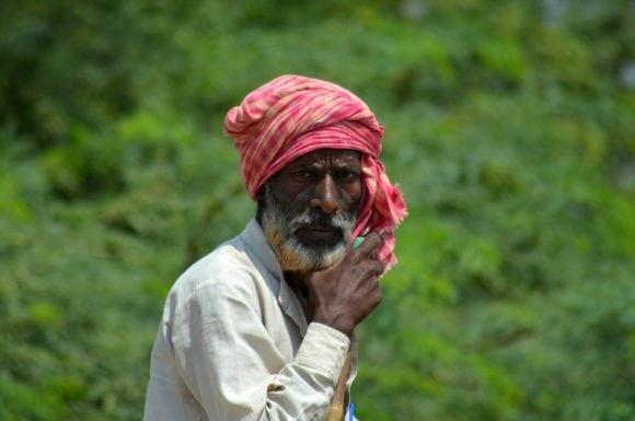 Kryddig Indisk kycklinggryta med vitlök